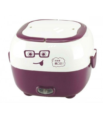 1 Litre Square Stainless Steel Multi-function Electric Lunch box/Rice Cooker! Cooks Food and Keeps it Fresh